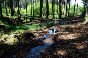 Reischenau - Ansichten Ettelried und Anried